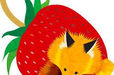 FoxElementary
